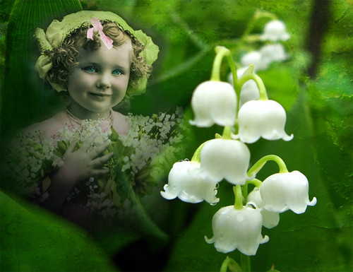 Lily of the Valley, Vintage Girl, Flowers & Textures