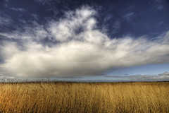Playground of the wind (Danil) Tags: blue sky holland netherlands landscape nikon wind daniel tag nederland sigma groningen hdr landschap lauwersoog lauwersmeer d300 provincie ballastplaat dedaniel