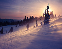 Paradise on Ice (KPieper) Tags: trees sunset sun snow ice landscape washington wind mtrainier rainiernationalpark kpieper pieperphotographynet