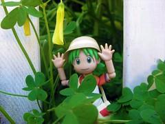 Rawr! (KayVee.INC) Tags: sf sanfrancisco california ca cute toy japanese manga kawaii figure figurine 2009 kaiyodo yotsuba danbo  cavey revoltech kayvee  danboard kayveeinc revoltechyotsuba 150409