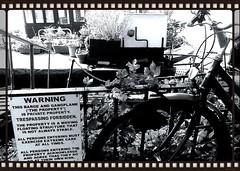 warning (mdlphotography) Tags: uk london thames warning river battersea barge mdlp