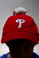 mouse on hat (beverlykaytw) Tags: boy shadow red white hat mouse kid child baseball mice phillies 2009challenge 2009challenge112
