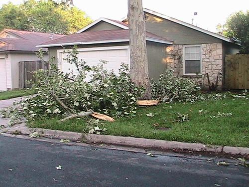 enjoy that mess neighbor