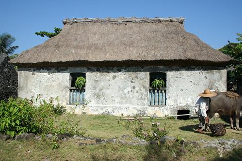 Savidug house