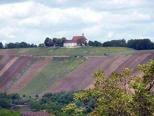 Vogelsburg