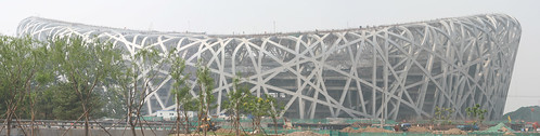Birds Nest_Panorama2