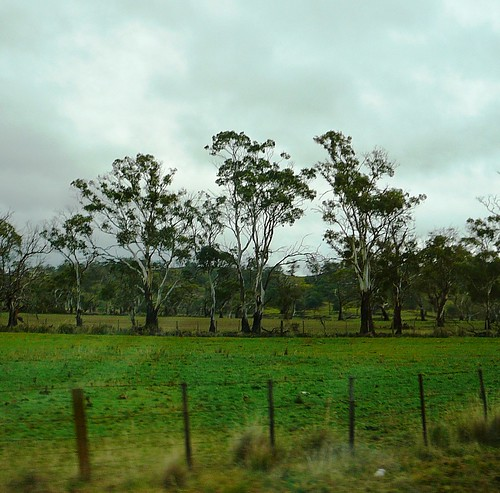 5 of 12: Rainy Landscape out the car window