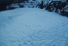 Smurf piss on the Mendenhall Glacier