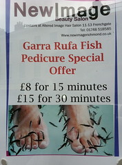 Poster in Richmond beauty shop (betsythedevine) Tags: 2011 may england coast2coast richmond fish pedicure ewwwww yorkshire day8 day9