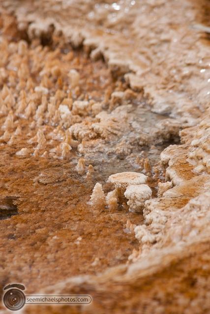 Yellowstone Day 1 52611 © Michael Klayman-023