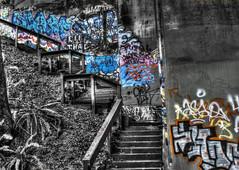 Graffiti Staircase (ohamlin1) Tags: seattle park city travel bridge blackandwhite bw usa white black art nature stairs landscape photography graffiti washington nikon hdr bnw photomatix d80