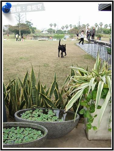 20090201_桃園綠風草原餐廳_06 by 唐妮可☆吃喝玩樂過生活.
