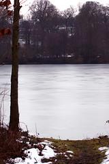 Frozen Lake (Paul S Mason) Tags: lake frozenlake yorkshiresculpturepark frozan