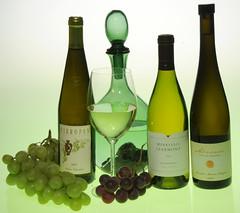 organic_wines