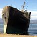 Eala Serena Boats - Chile Study Abroad