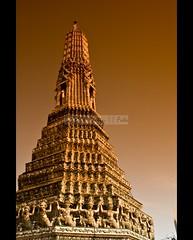 Bangkok-107 (dexterberaquit) Tags: river thailand temple nikon bangkok ivy grandpalace thai tuktuk watarun dex floatingmarket watpho baiyoke elephantvillage d80 18135mm cobrashow