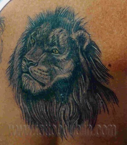 black shade lion tattoo. Black and shading style lion tattoo on back by