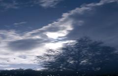 Reflection on car roof (Micael Carlsson) Tags: nature blog fotograf natur karlstad kil brllop vrmland arvika deje torsby portrtt sunne hagfors hemsida forshaga livsstil miccar kristinhamn wwwmicaelcarlssonse wwwmiccarse
