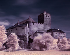 Kost Castle - infrared (Stevacek) Tags: castle geotagged ir nikon infrared czechrepublic hrad kost d300 czechparadise ceskyraj eskrepublika bohemianparadise hradkost eskraj bonecastle infracerveny geo:lat=5049043209939161 geo:lon=1513371567873232