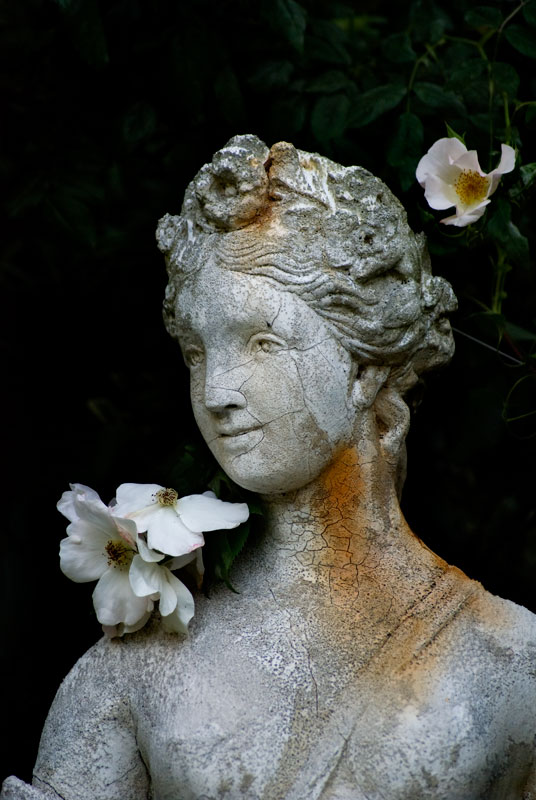 Flora-detail