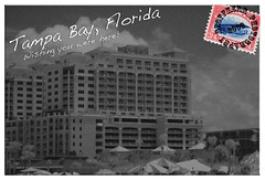 "Tampa Postcard • <a style=""font-size:0.8em;"" href=""https://www.flickr.com/photos/34058517@N02/3641621409/"" target=""_blank"">View on Flickr</a>"