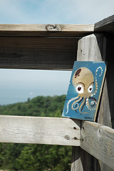 Guerilla art drop- muskegon, MI (noitaN) Tags: art stencil dune free lakemichigan greatlakes overlook octo muskegon hoffmaster faf noitan