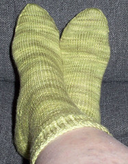 Sundara Sock - prickly pear complete