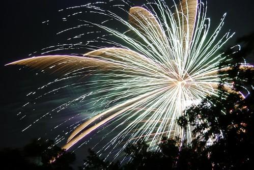 Fireworks2009-14