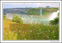 Niagara Falls (mississaugapictures) Tags: ontario canada landscape niagarafalls niagara falls waterfalls
