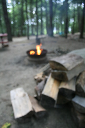 Out of Focus Campsite Maine