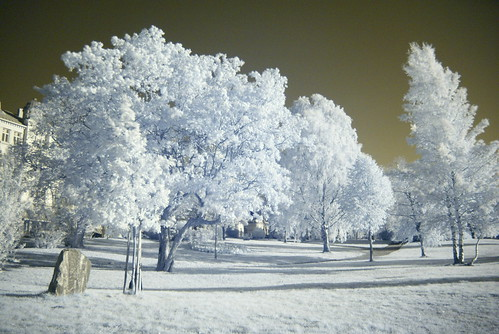Same view in infrared light