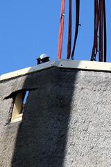 t Zand - 3630 - nog even en de romp hangt weer in de takels (Quistnix!) Tags: windmill moulin molen windmolen dehoop windmhle tzand molinodeviento moinhodevento moulinvent