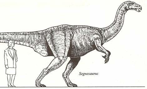 """The Dinosaur Data Book"" (1990) p. 147"