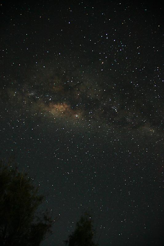 Star IMG_0086-w