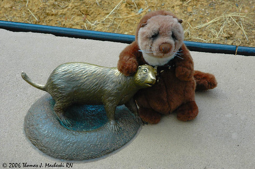 Mini-Fred Makes a Friend