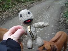 soggy sackboy after his swim (joysaphine) Tags: wales march spring stream joy first pembrokeshire 2009 soggy naturetrail swimm llanddowror sackboy