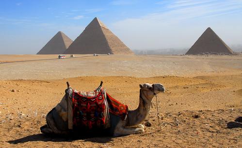 LND_2543 Giza Pyramids