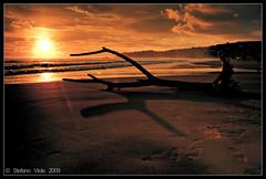 Ombre cinesi (Stefano Viola) Tags: sunset sea italy costa sun man beach nature colors clouds canon coast italia tramonto nuvole mare riva walk natura burning burn sole gaeta spiaggia 1740 sabbia nuances canon1740 sfumature 50d canoneos50d stefanoviola