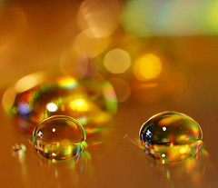 Honey (Kounellis) Tags: colour macro art gold drops bokeh honey 60mm waterdrops refractions hbw kounelli