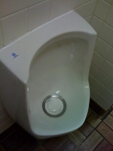 Waterfree toilet