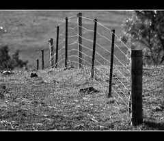 Not Quite over the hill.......... (Kerri Afford) Tags: old house rural fence blackwhite fences blackwhitephotos chosenchallengers