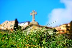 cimitero, santa Maria del calcinaio, Cortona