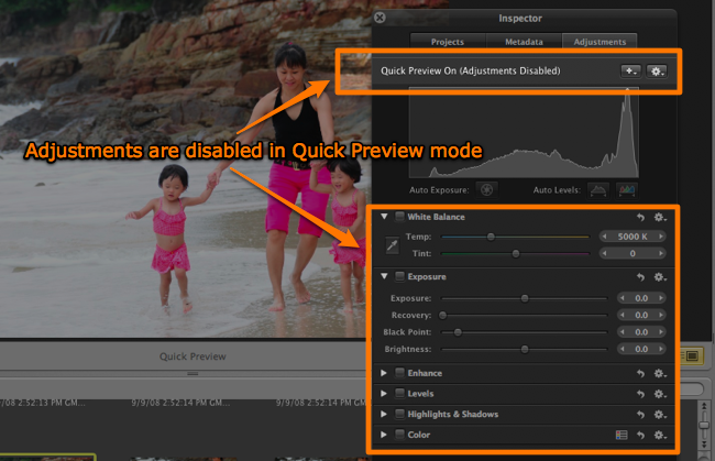 Adjustments are disabled in Aperture's Quick Preview mode
