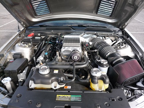 Ford Mustang Gt500 Super Snake. Shelby GT 500 Super Snake