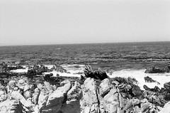 00040009 (thekittykat) Tags: africa vacation film southafrica capetown 35mmfilm mamiya645 blackandwhitefilm
