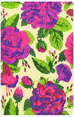 Rose Pattern (msjordankay) Tags: new pink red roses white paris flower green floral beauty fashion rose modern lady illustration forest vintage magazine print cards leaf high rainbow midwest colorful pattern purple bright drawing antique feminine elle victorian young kay cream inspired free minneapolis rosa style off fresh best class retro jordan business textile vogue end greenery kelly illustrator wildflowers organic phillip lime hip drawn mad expensive popular wildflower prada brand bushes runway mcad illustrate tangible shading periodical centifolia msjordankay