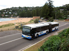 State Transit Authority (Sydney Buses) Volvo B12BLEA articulated 1664 in Ocean Road near Palm Beach Road, Palm Beach, Sydney, Australia. (express000) Tags: bus beach volvo sydney palmbeach sydneybuses oceanroad sydneyaustralia busesinaustralia statetransitauthority volvob12bleaariculated australianbuses