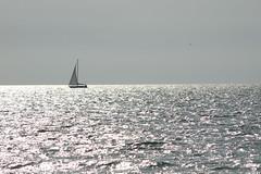 Silver Sea (Francesco Caracciolo) Tags: sea mare francesco caracciolo francescocaracciolo