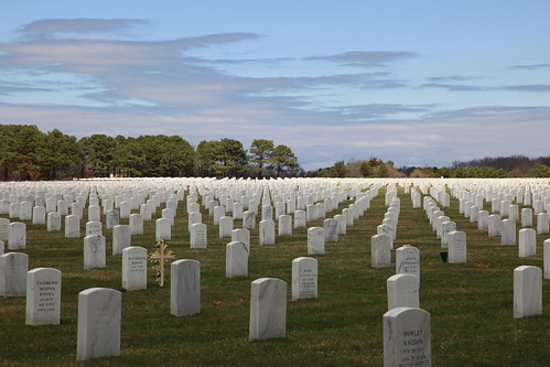 Calverton National Cemetery. Calverton National Cemetery, Part 15. In my opinion, this is a great shot that I took and I do love this one.