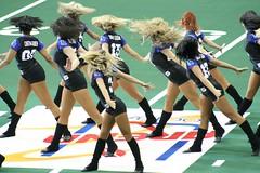 IMG_6878_1600x1067 (Les_Stockton) Tags: football babe af2 cheerleader arenafootball tulsatalons mahoningvalleythunder